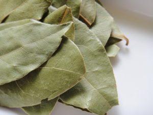 【復縁のおまじない、自然消滅しそうな愛を復活させるおまじない】月桂樹の葉三枚と相手の写真で「ローレルの復縁のおまじない」