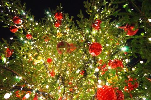 クリスマスの折り鶴で恋のラッキーがおこるおまじない