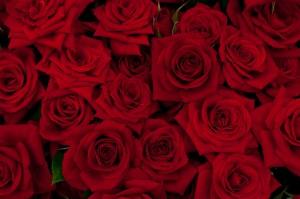ミネラルウォーターと赤いバラで復縁のおまじない