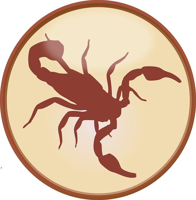 crab-159028_640