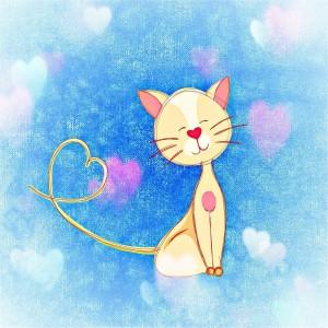 cat-706081_1280