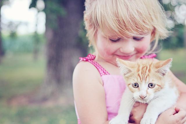 怒りを解く、誤解を解く、友情を復活させるおまじない