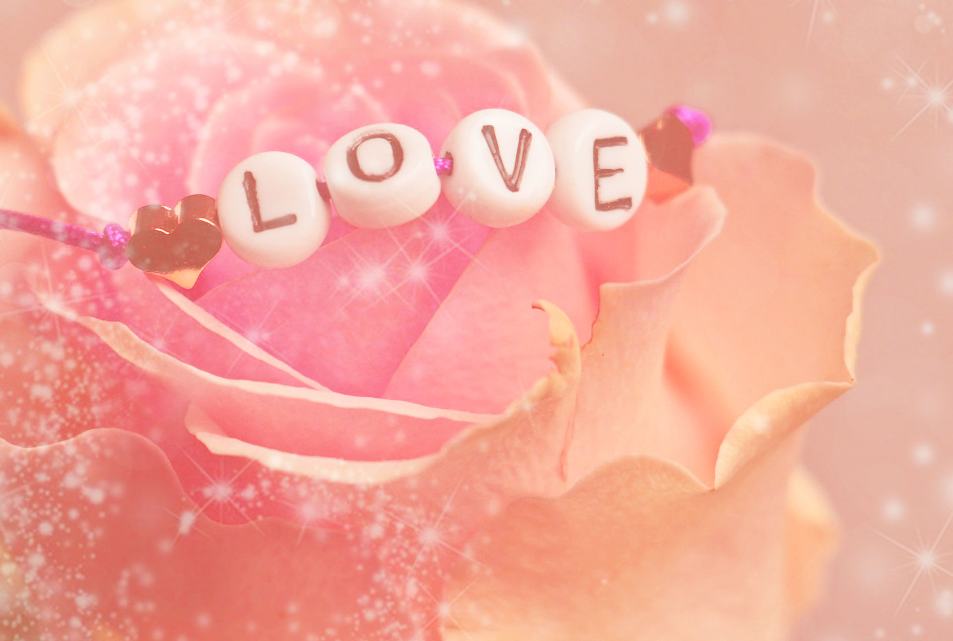 恋の願いが叶うキラキラ系バラの待ち受け!