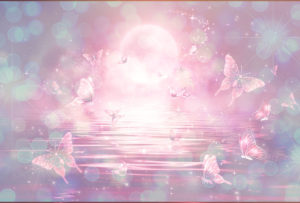 ピンクの蝶と満月の恋が叶う待ち受け
