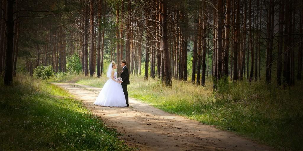 wedding-626020_1920