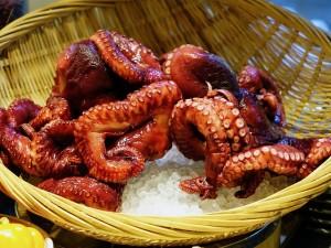 octopus-489868_640