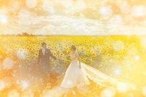 プロポーズされる、ひまわり畑の結婚式の待ち受け