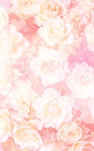 略奪愛・不倫を叶えるキラキラ白薔薇のライン背景画像・待ち受け