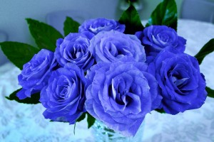flowers-616901_1280