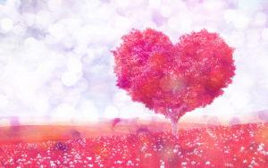 ハートの木の辛い恋が叶う待ち受け