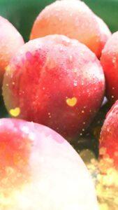 桃の実で運気が上がる待受画像
