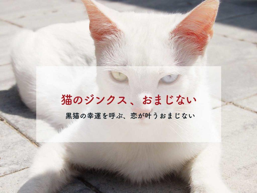 猫のジンクスとおまじない【黒猫の恋のおまじない、黒猫は幸運の使者?】