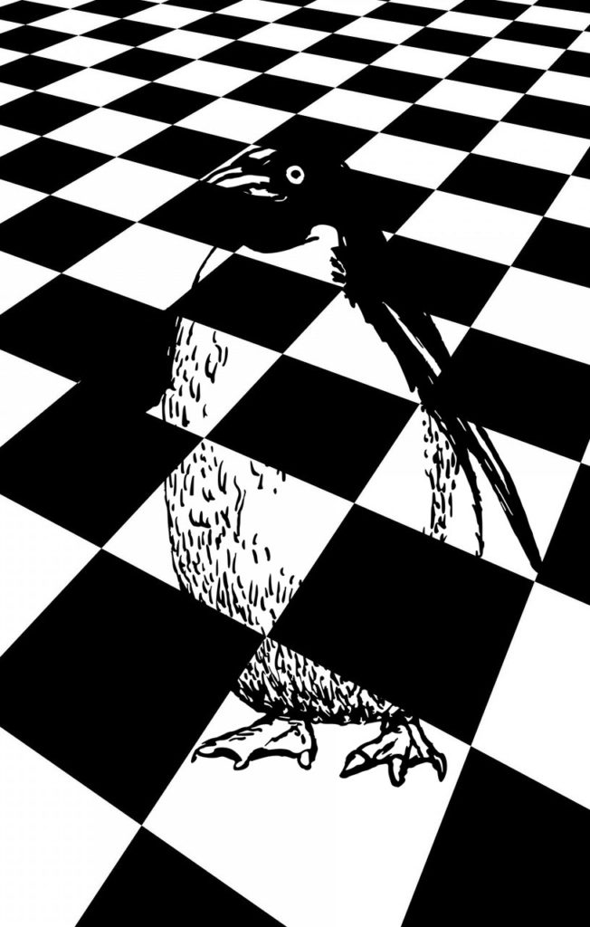 ペンギンの受験に絶対合格する待ち受け、ラインの背景画像