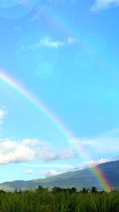 【最終兵器】恋の願いが叶う待ち受け、青空のダブルレインボー