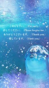 イルカのホ・オポノポノの待ち受け画像『潜在意識をクリーニング!』