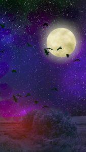 満月と蝙蝠が運気をあげる、いいことが起こるハロウィンのおまじない待ち受け