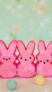 本当に恋に効く、ウサギのマシュマロの待ち受け